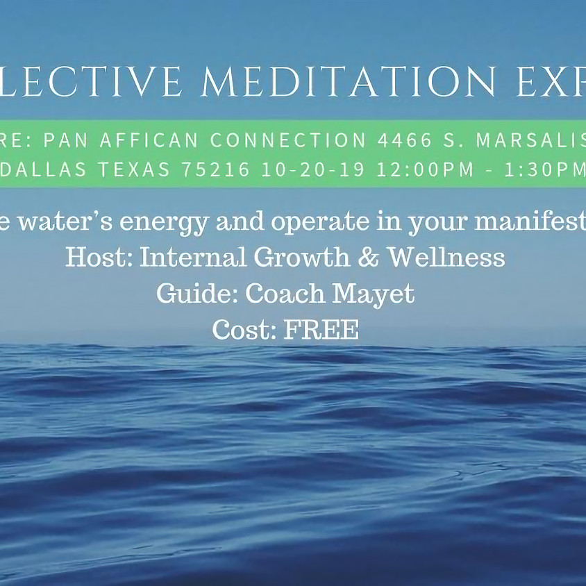 Collective Meditation Experience