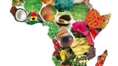 Akwaaba: Dr. Akua's Ghanaian Vegan Cuisine