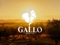 tumb_Gallo