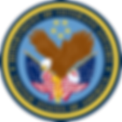 us-department-of-veterans-affairs-logo-p