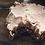 Thumbnail: White Bean and Walnut Paté