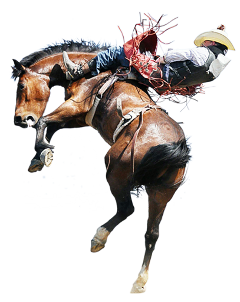 bucking-horse1new.png