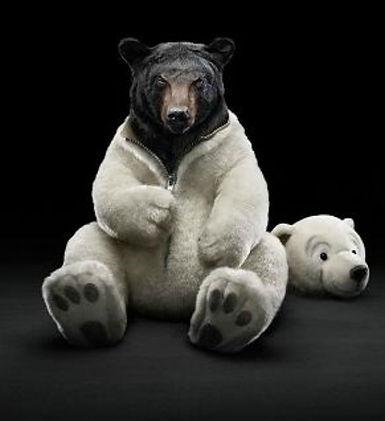 Internet Ministers Bear.jpg