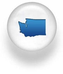 Washington button.jpg