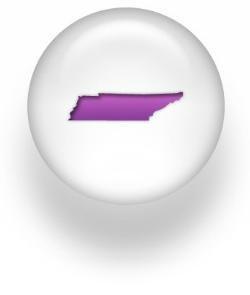 TN button.jpg