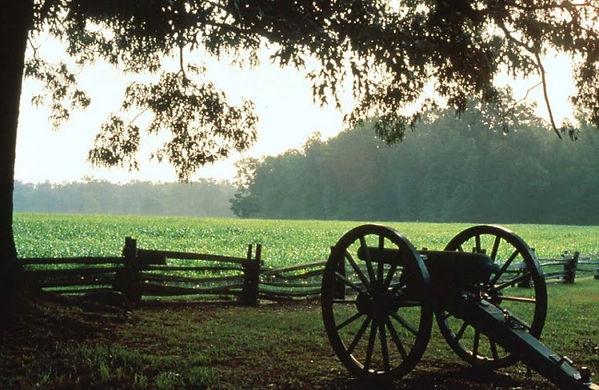 Savannah Lexington cannon.jpg