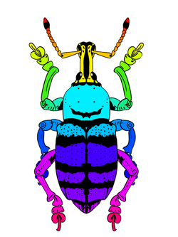 Weevil_jumbo - Color