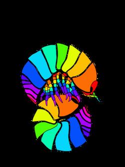 Isopoda - Colored