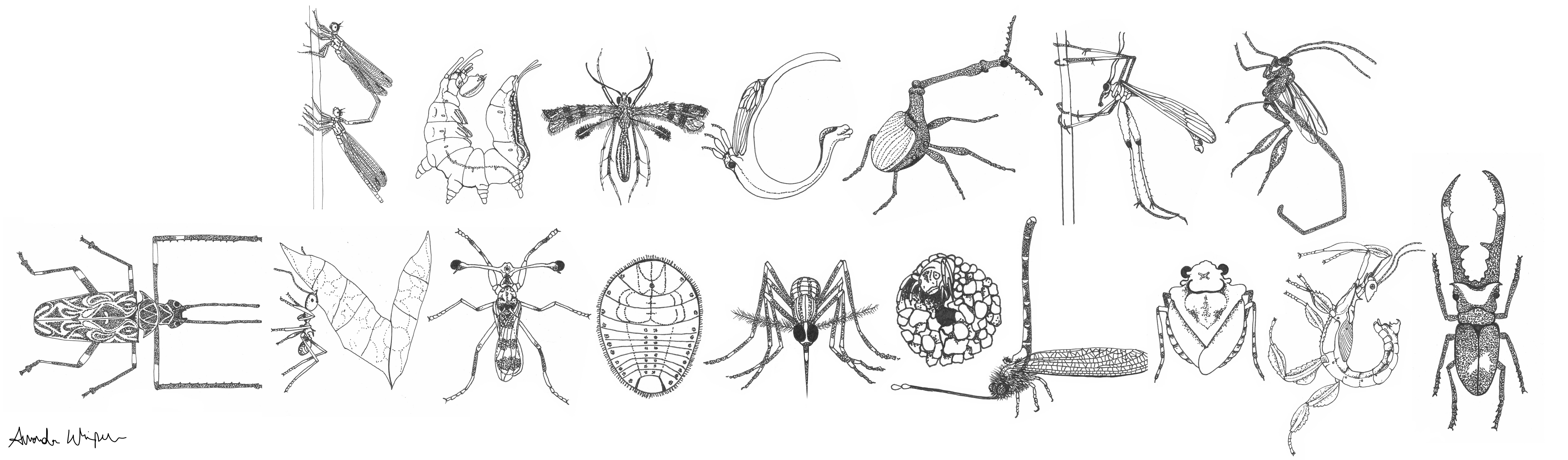 Rutgers Entomology