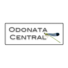 Odonata Central