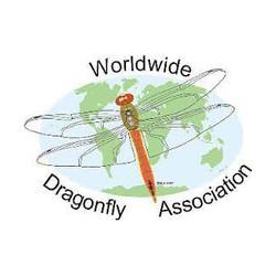 Worldwide Dragonfly Association