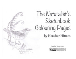 Heather Hinam