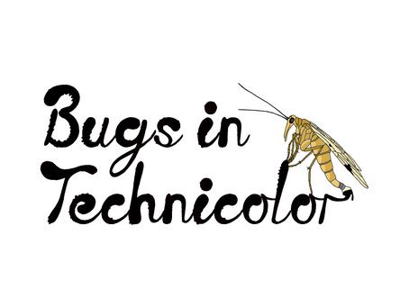 Bugs in Technicolor Artists