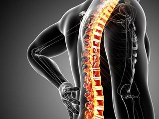 Rešite se bola u leđima u 5 koraka