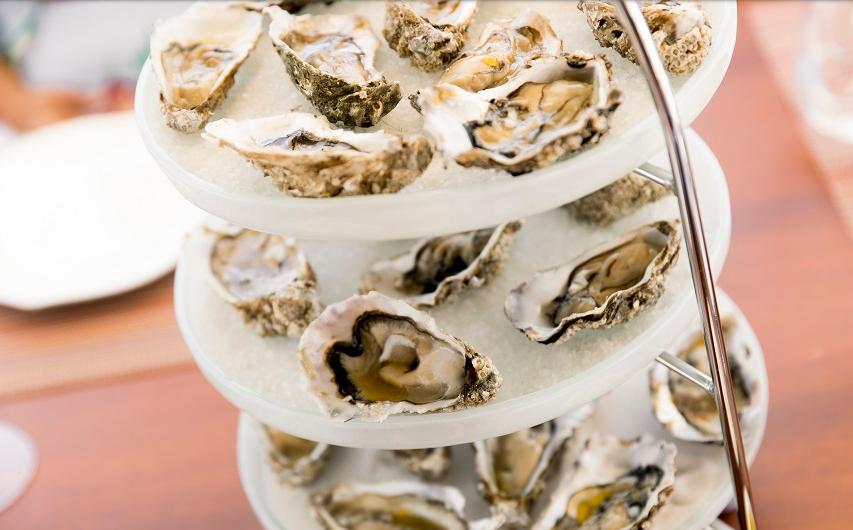 Fresh Oysters on board in Malta