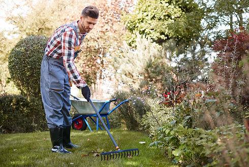 gardener-raking-leaves-in-the-garden-HDK