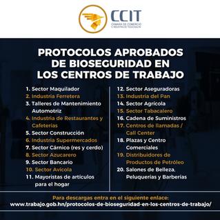 Protocolos aprobados de Bioseguridad en Los Centros de Trabajo