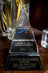 Pele Award for Advertising