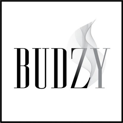 Budzy Box.png
