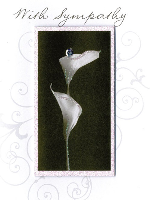 YT147 (6 cards @ 39p each)