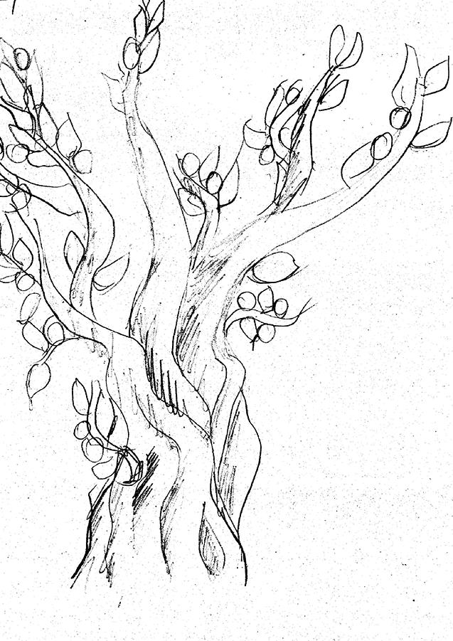 בדרך כלל השורשים של העץ חבויים מתחת לאדמה. בציור הם מסמלים את תת המודע ומלמדים על ביתו, עברו ויציבותו של המצייר. לא כולם מציירים שורשים, אז זה אומר שהכותב לא מחובר לעברו ולביתו? או שהוא חסר בסיס ויציבות? ממש לא. לרוב אלו אנשים המתייחסים למה שהם רואים ונוהגים שלא לחשוף פרטים רבים על עצמם.