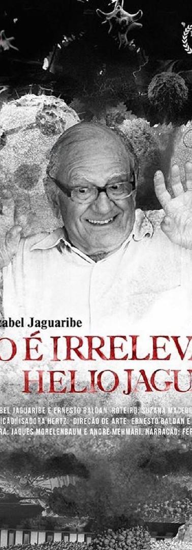 TUDO É IRRELEVANTE, HÉLIO JAGUARIBE, 2017