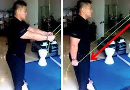 triceps 2.jpg