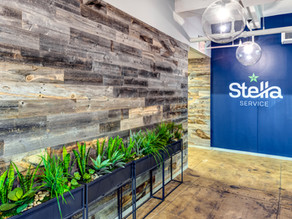 Bringing teams back to the office with Biophilic Design