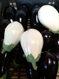 Aubergines blanches de l'exploitation Les vergers des grives. A retrouver dans le magasin de la ferme.