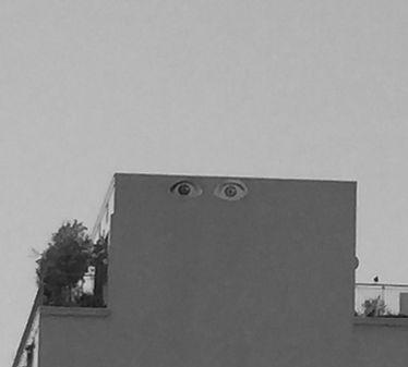 eyes_edited.jpg