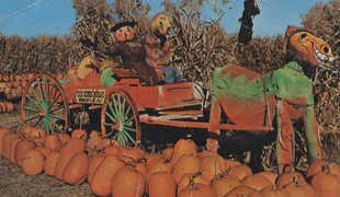 Funnykin Farm Scene tn.jpg