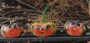 Funnykin Gourds Group 2 tn.jpg