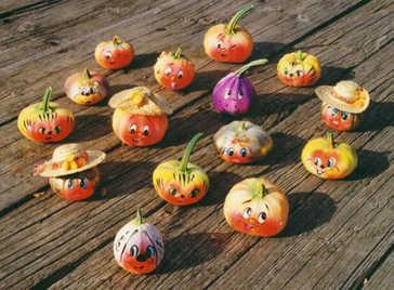 Funnykin Gourds Group 1 tn.jpg