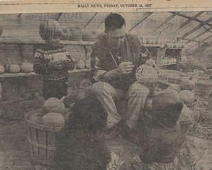 pumkins ny daily news - Copy tn.jpg