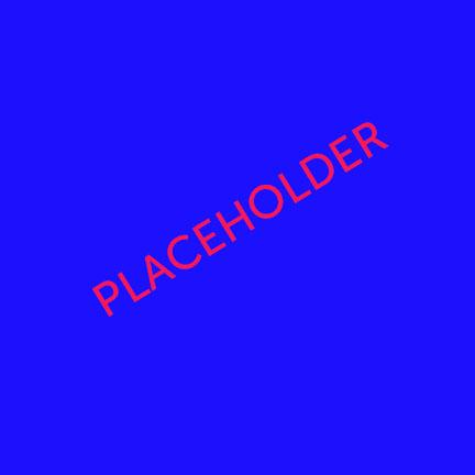 placeholder copy 22