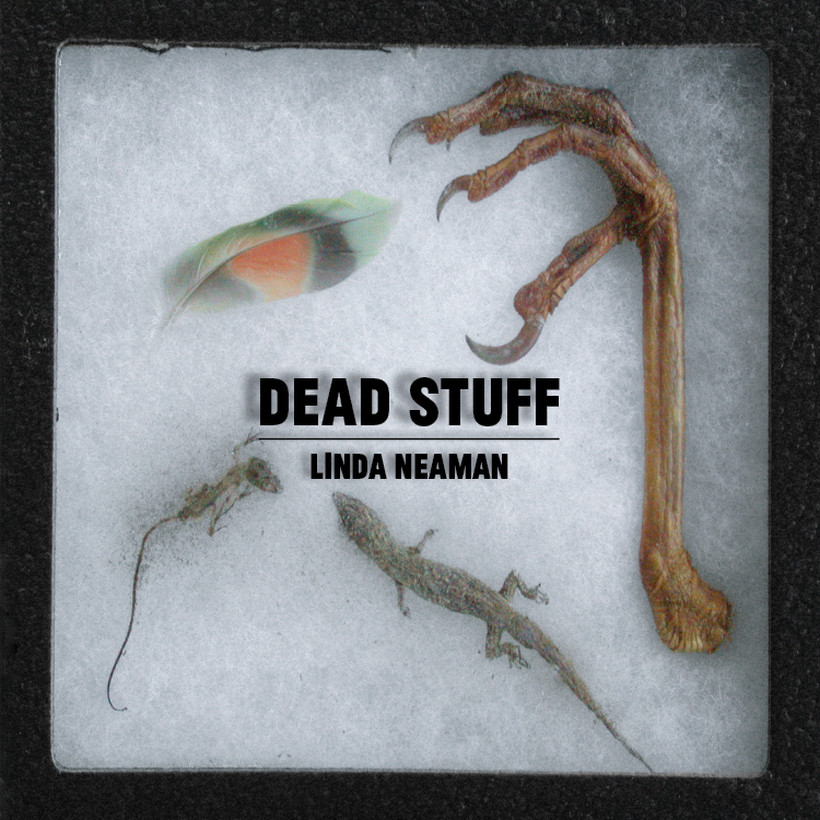 Dead Stuff