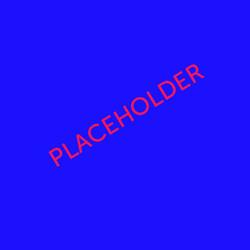 placeholder copy 23
