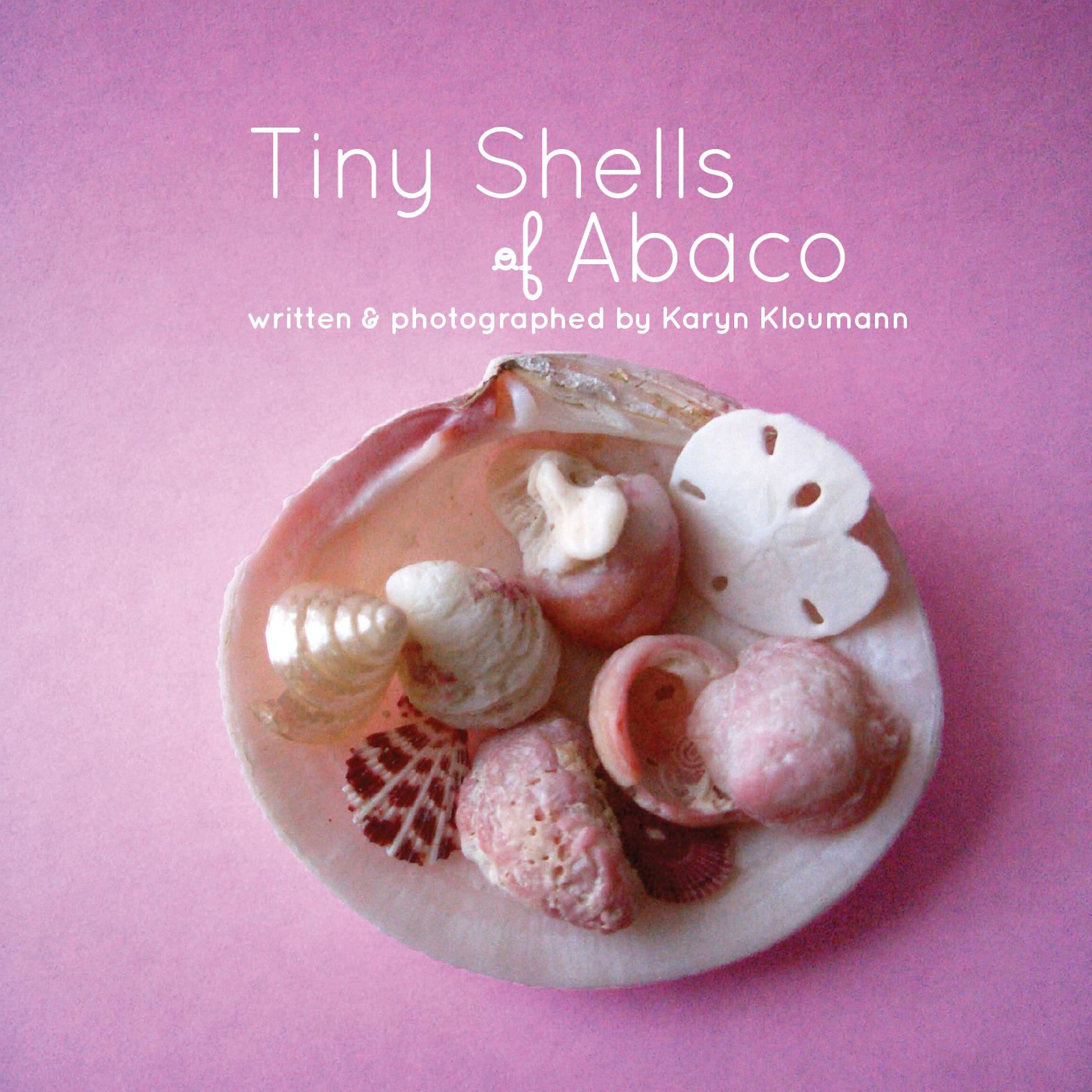 Tiny Shells of Abaco
