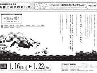 次回公演『木に花咲く』