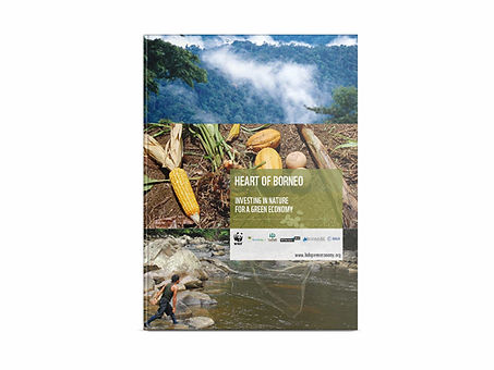 16_heartofborneo_investing_nature_green_economy_part0.jpg