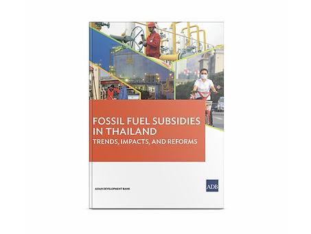 29_fossil-fuel-subsidies-thailand.jpg