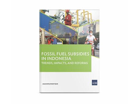 31_fossil-fuel-subsidies-indonesia.jpg