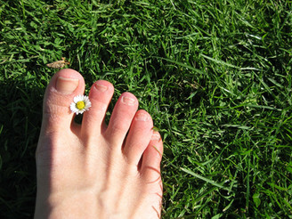 Understanding Gout with TCM