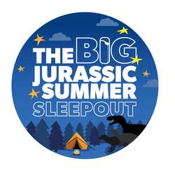 Summer-sleepout-logo