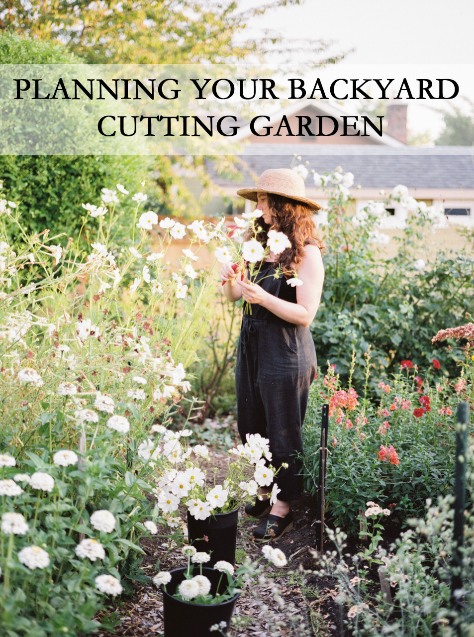 Planning Your Backyard Cutting Garden Workshop at Botanique in Seattle, WA- January 4th, 2020