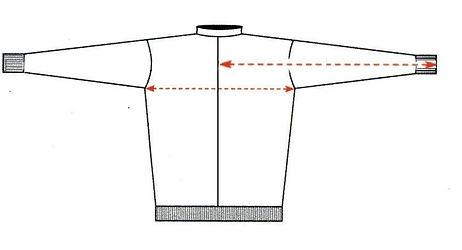body-sleeve.jpg