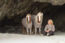 Fair Isle ponies - 01