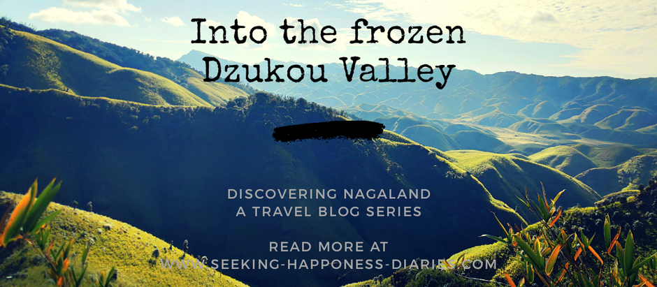 Discovering Nagaland  - Into the Frozen Dzukou Valley