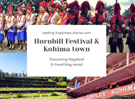 Discovering Nagaland - At Hornbill Festival and Kohima Town