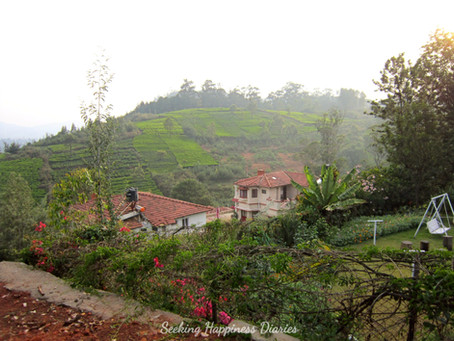Ooty or Coonoor? Which one would you pick?